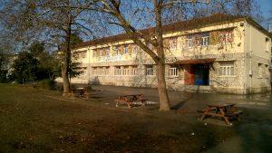 5ο Δημοτικό Σχολείο Αλεξάνδρειας